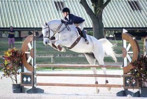 horse trainer parrish florida